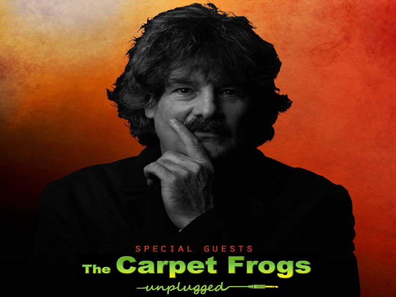 The Carpet Frogs Unplugged