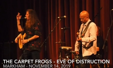 Eve Of Destruction - Carpet Frogs